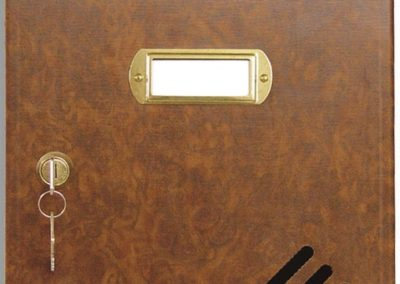 Buzón metalico vertical de interior de ferpasa. Puerta decoración raiz. El mas vendido en Valencia